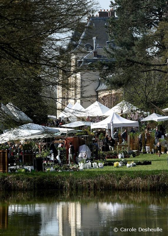 Fête des Plantes St Jean de Beauregard